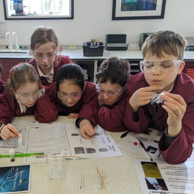Detective work at the Haileybury Science Discovery Day